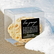 Luxury Natural Sea Sponge